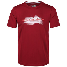 Regatta Fingal V Camiseta Hombre, delhi red